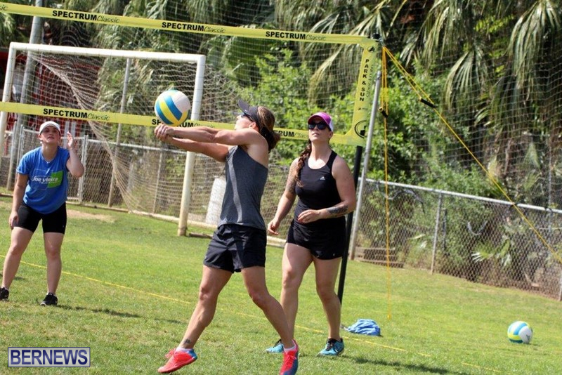 Bermuda-Corporate-Volleyball-Tournament-May-2016-8