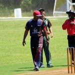 Bermuda Cricket Western Stars - Willow Cuts (1)