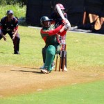 Bermuda Cricket Western Stars - Willow Cuts (10)