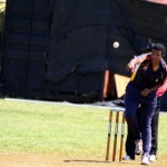 Bermuda Cricket Western Stars - Willow Cuts (15)