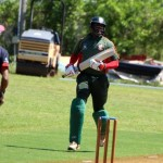 Bermuda Cricket Western Stars - Willow Cuts (16)