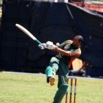 Bermuda Cricket Western Stars - Willow Cuts (18)