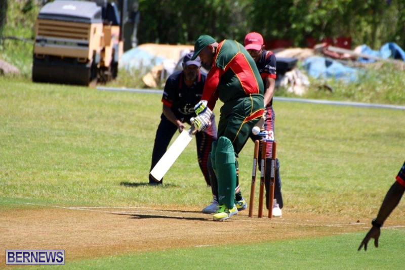 Bermuda-Cricket-Western-Stars-Willow-Cuts-3