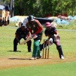 Bermuda Cricket Western Stars - Willow Cuts (5)