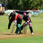 Bermuda Cricket Western Stars - Willow Cuts (6)