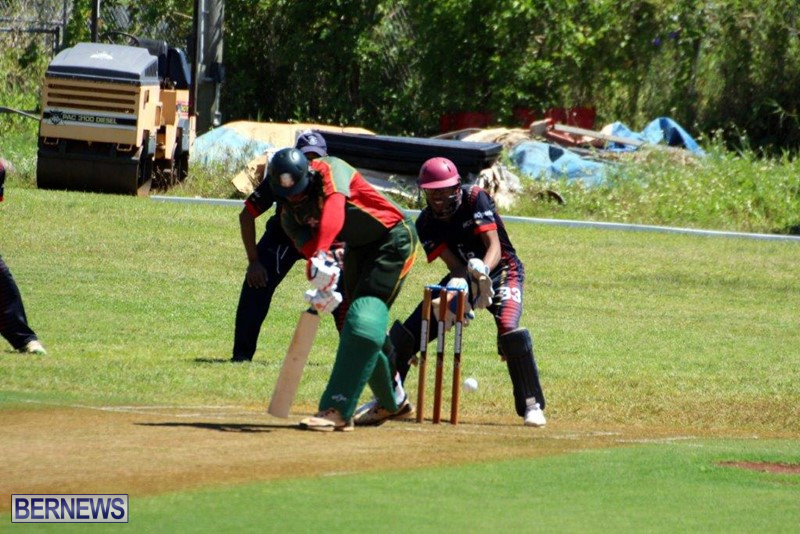 Bermuda-Cricket-Western-Stars-Willow-Cuts-6