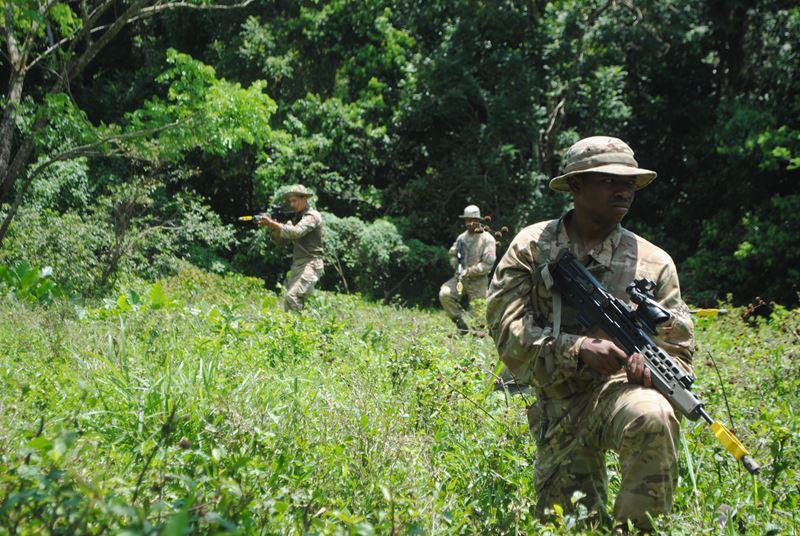 Bermuda Regiment May 2 2016 2