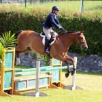 Equestrian Bermuda May 03 2016 (13)