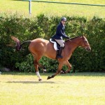 Equestrian Bermuda May 03 2016 (14)