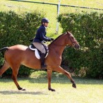 Equestrian Bermuda May 03 2016 (15)