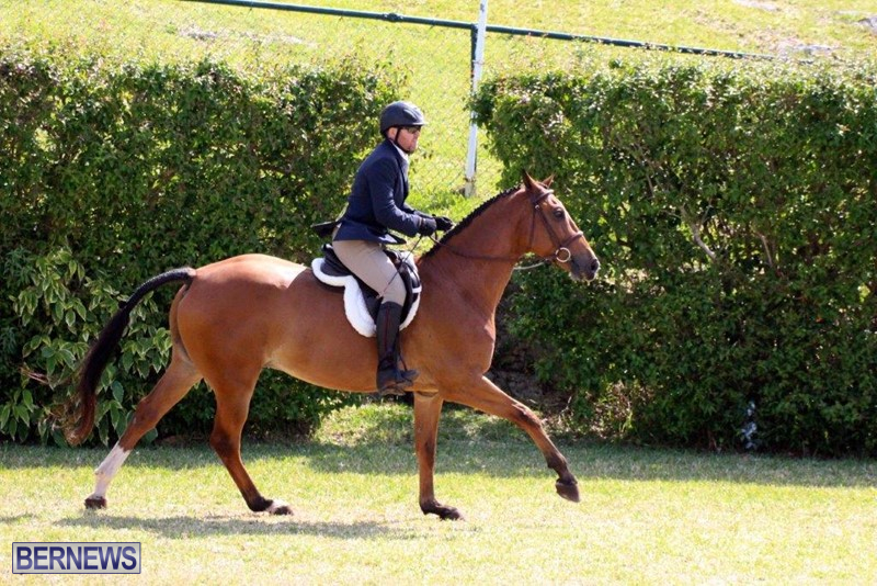 Equestrian-Bermuda-May-03-2016-15