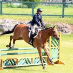 Equestrian Bermuda May 03 2016 (16)