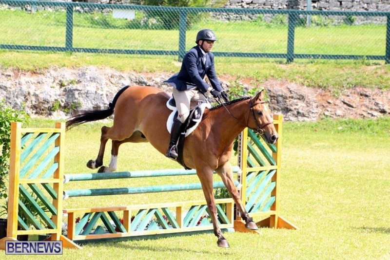 Equestrian-Bermuda-May-03-2016-16