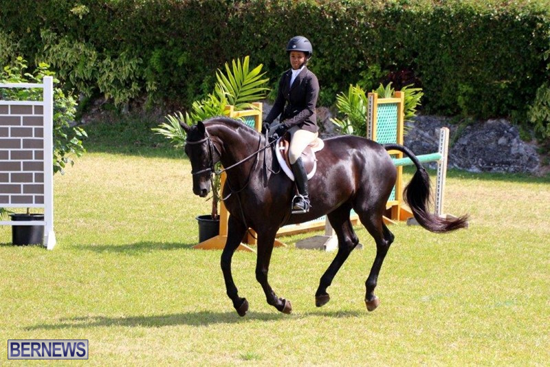 Equestrian-Bermuda-May-03-2016-18