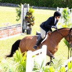 Equestrian Bermuda May 03 2016 (2)