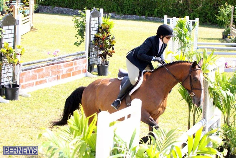 Equestrian-Bermuda-May-03-2016-2