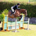 Equestrian Bermuda May 03 2016 (3)