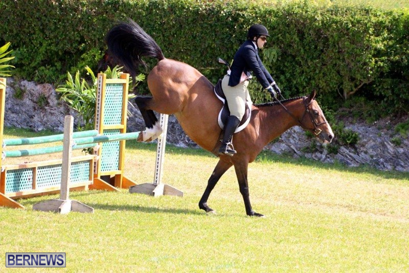 Equestrian-Bermuda-May-03-2016-4