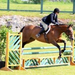 Equestrian Bermuda May 03 2016 (5)