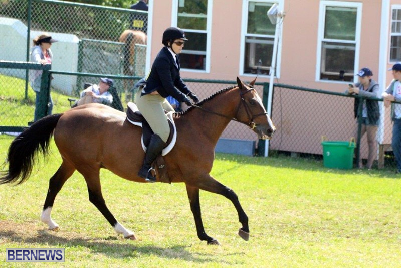 Equestrian-Bermuda-May-03-2016-6