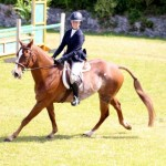 Equestrian Bermuda May 03 2016 (7)