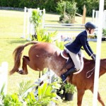 Equestrian Bermuda May 03 2016 (9)