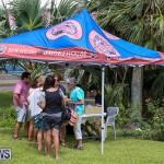 Onion Day at Carter House Bermuda, May 14 2016-2