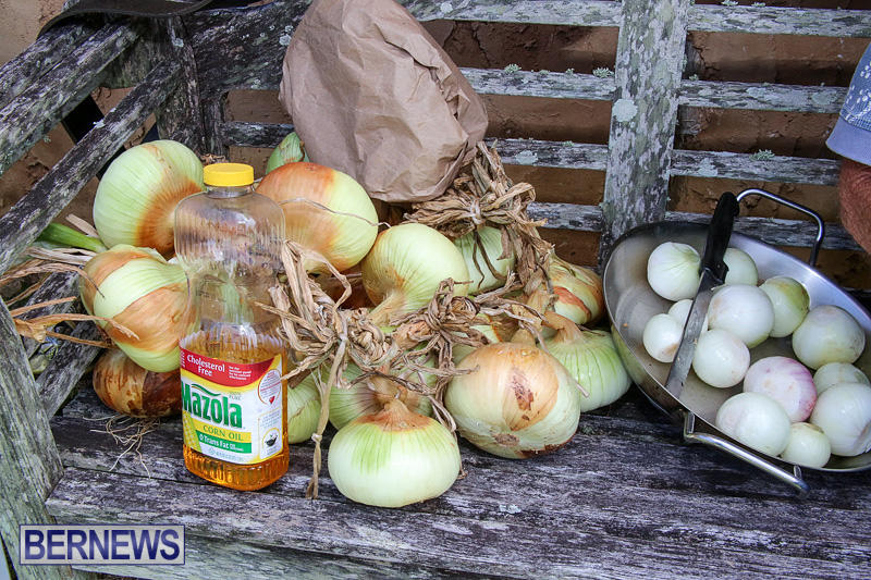 Onion-Day-at-Carter-House-Bermuda-May-14-2016-26