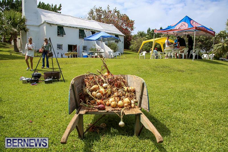 Onion-Day-at-Carter-House-Bermuda-May-14-2016-27