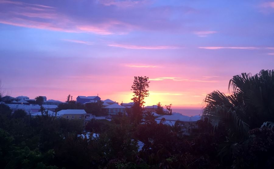 Pink Sunset Bermuda Generic May 2016 ForB