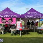 Relay For Life Bermuda, May 27 2016-17