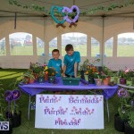 Relay For Life Bermuda, May 27 2016-75