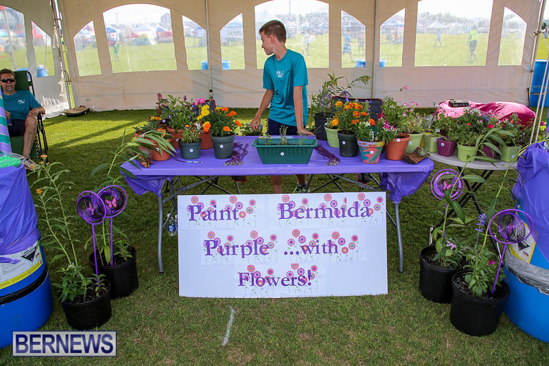Relay-For-Life-Bermuda-May-27-2016-76