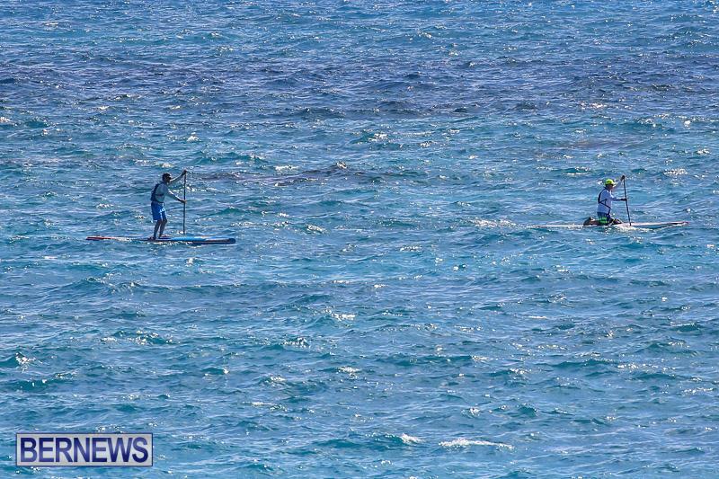 SUP-Around-The-Island-Bermuda-May-28-2016-18
