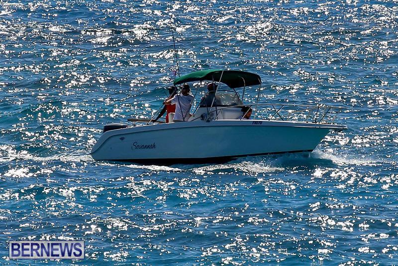 SUP-Around-The-Island-Bermuda-May-28-2016-23