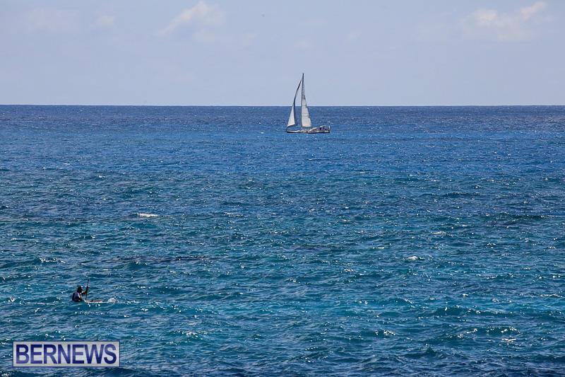 SUP-Around-The-Island-Bermuda-May-28-2016-28