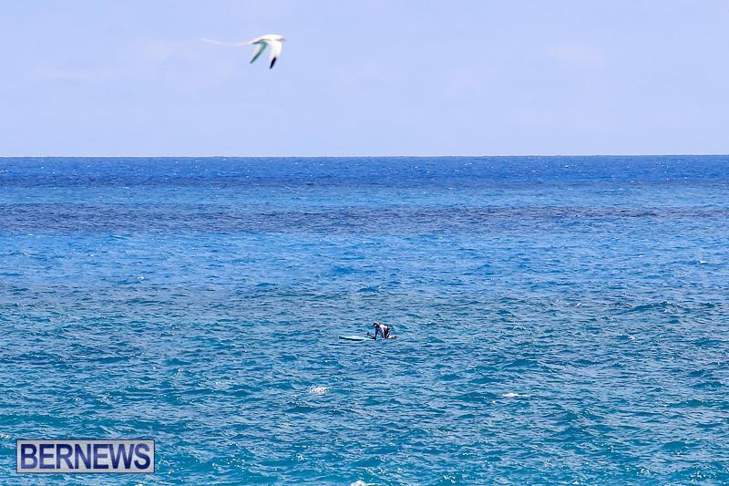 SUP-Around-The-Island-Bermuda-May-28-2016-39