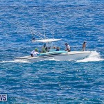 SUP Around The Island Bermuda, May 28 2016-42