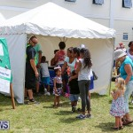 Somersfield Academy Fair Bermuda, May 14 2016-16