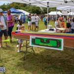 Somersfield Academy Fair Bermuda, May 14 2016-18