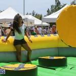 Somersfield Academy Fair Bermuda, May 14 2016-5