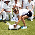2016 Bermuda Celebrity cricket June GT (2)