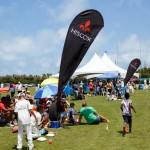 2016 Bermuda Celebrity cricket June GT (26)