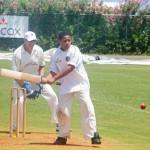 2016 Bermuda Celebrity cricket June GT (27)