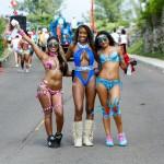 BHW Parade of Bands Bermuda Carnival GT 2016 (113)