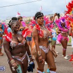 Bermuda Heroes Weekend Parade Of Bands, June 18 2016 (121)