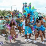 Bermuda Heroes Weekend Parade Of Bands, June 18 2016 (14)