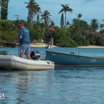 Bermuda Seagull Race June 2016 JM (11)