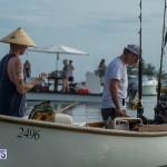 Bermuda Seagull Race June 2016 JM (12)