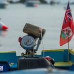 Bermuda Seagull Race June 2016 JM (18)